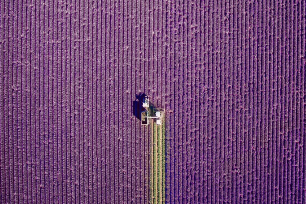 valensole-provence-france-by-jcourtial